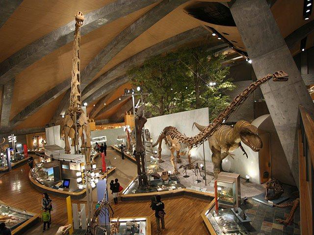 群馬 自然 史 博物館
